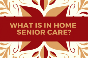 What is in home senior care_